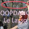 [TUTO] Le Lasso